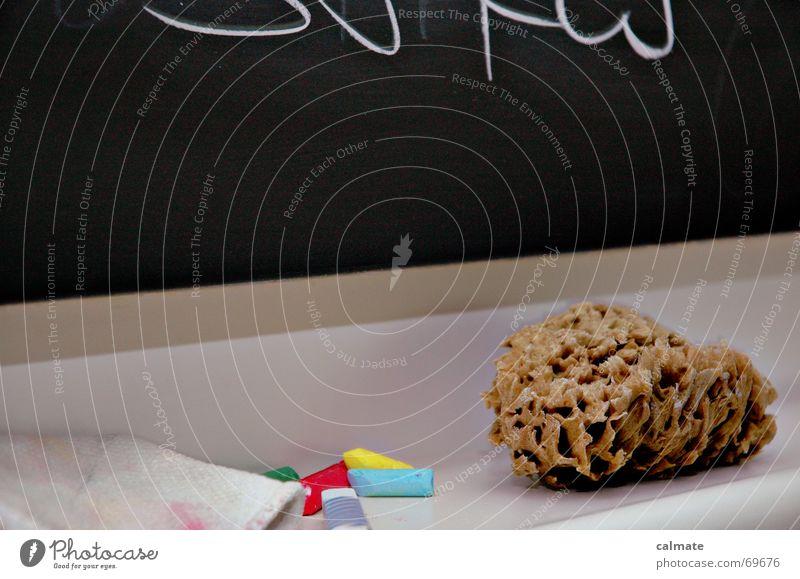- dozentenwerkzeug - Schule Zusammensein Studium Student Tafel Wissen zeigen Hass Bildung Schwamm Putztuch Formel