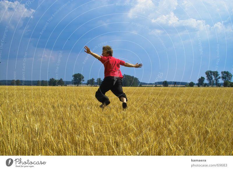 Kitz Sommer Freude Leben springen Feld Angst laufen rennen Reh Kasper Rehkitz