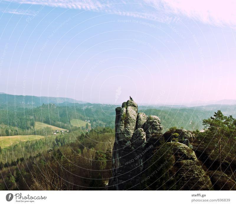 Postkartenmotiv II Natur Ferien & Urlaub & Reisen Einsamkeit Landschaft Ferne Wald Berge u. Gebirge Freiheit außergewöhnlich Felsen Horizont Idylle groß