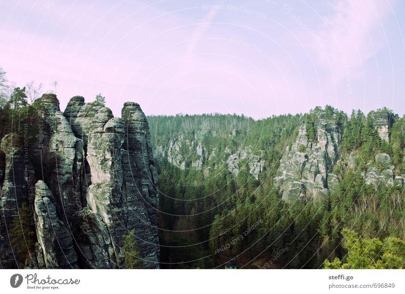 stumme Giganten Ferien & Urlaub & Reisen Landschaft Ferne Wald Berge u. Gebirge Freiheit außergewöhnlich Felsen Tourismus wandern hoch ästhetisch Ausflug