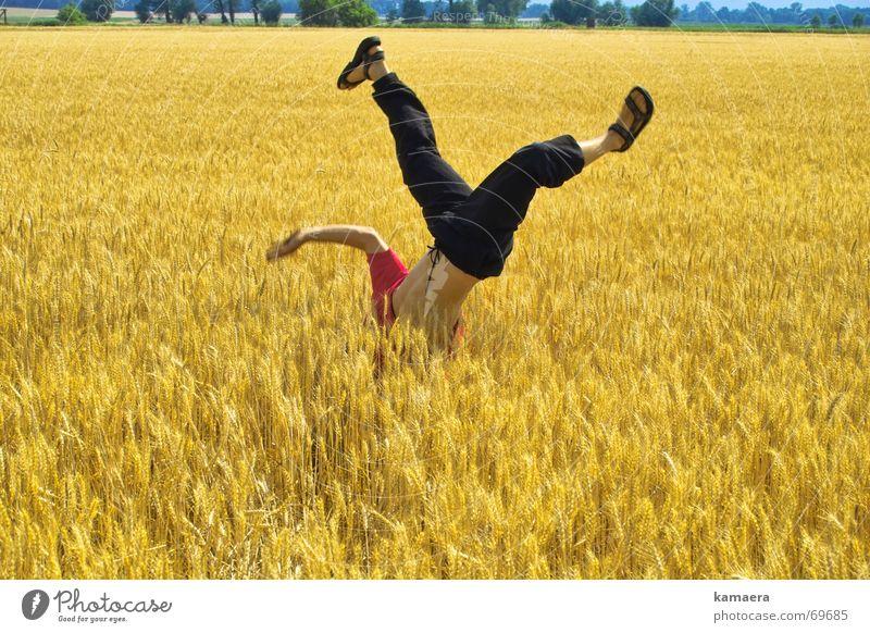 Cornfreeze Leben Feld Geschwindigkeit sportlich Lebensfreude Korn Kornfeld beweglich Breakdancer Handstand Tänzer