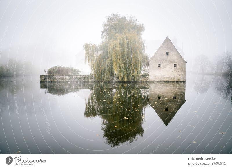 Castle in the mist ruhig Ferne Natur Landschaft Wasser Wetter Nebel Baum See hell grün Stimmung Einsamkeit geheimnisvoll alone available light bright calm