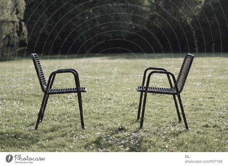 scheingefecht Natur Einsamkeit Landschaft Umwelt Wiese Gras sprechen Garten Park sitzen Schönes Wetter einzigartig Pause Stuhl Kontakt Partnerschaft