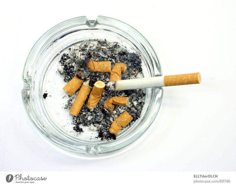 TeerwerQ Glas Rauchen brennen Zigarette Geruch ungesund Objektfotografie Zigarettenasche Aschenbecher Nikotin Übelriechend Zigarettenstummel Filterzigarette