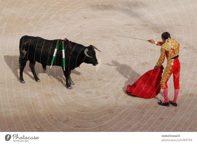 dolchstosslegende Stierkampf Bulle Stierkämpfer rot Spanien Frankreich Arles Stadion Tradition Provence brutal stark Rind Mut gefährlich Außenaufnahme töten