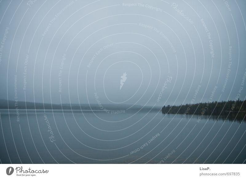 So weit das Auge reicht Himmel Natur Ferien & Urlaub & Reisen blau Wasser Baum Erholung Landschaft ruhig Ferne Umwelt Küste Freiheit See Wetter Zufriedenheit