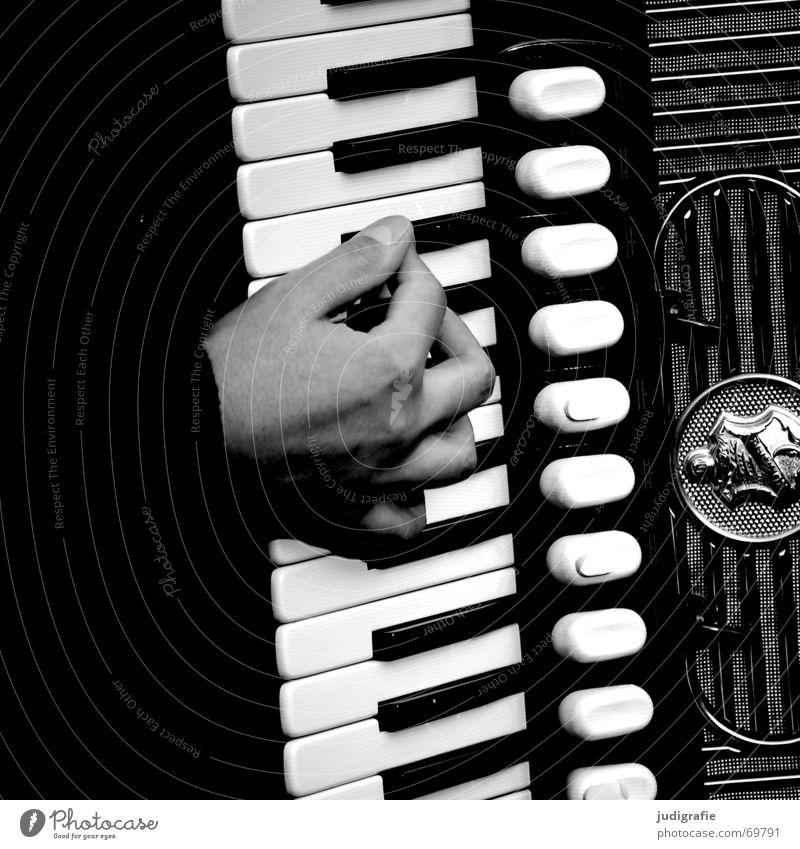 Musik 4 Hand schwarz Musikinstrument Klang Rhythmus Akkordeon