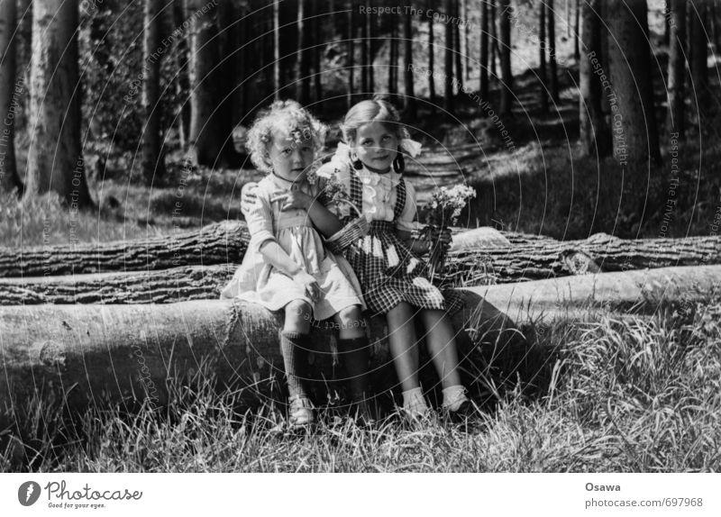 Schwestern Mensch Kind Natur Sommer Sonne Baum Landschaft Mädchen Wald Umwelt Liebe feminin Gras Glück Familie & Verwandtschaft Zufriedenheit