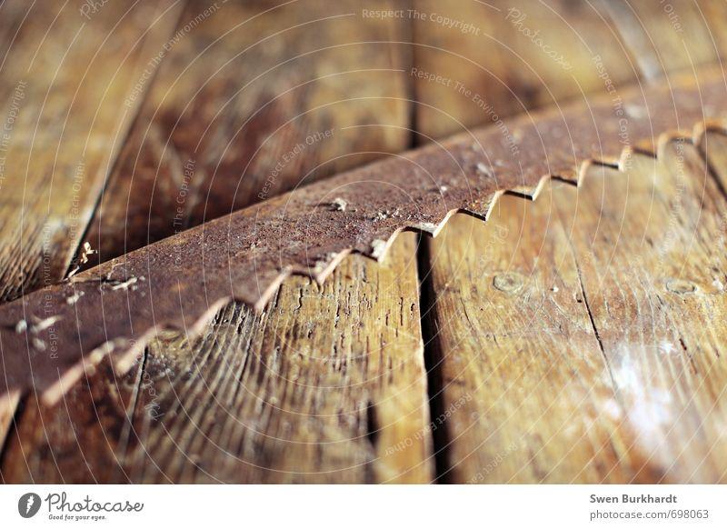 Schrotsäge in ihrem Element alt Bewegung Holz braun Metall Arbeit & Erwerbstätigkeit dreckig Spitze Abenteuer Reinigen Baustelle historisch Landwirtschaft Beruf