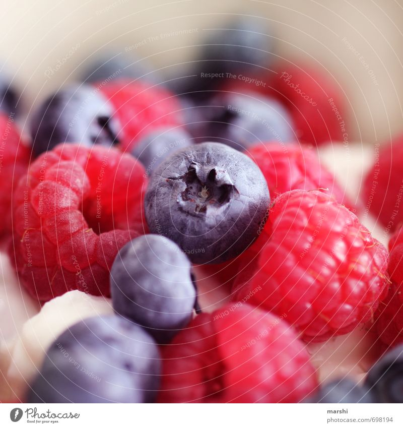 Vitamine Lebensmittel Frucht Ernährung Stimmung Blaubeeren Himbeeren Beeren lecker Appetit & Hunger Gesundheit Obstsalat Farbfoto Innenaufnahme Nahaufnahme