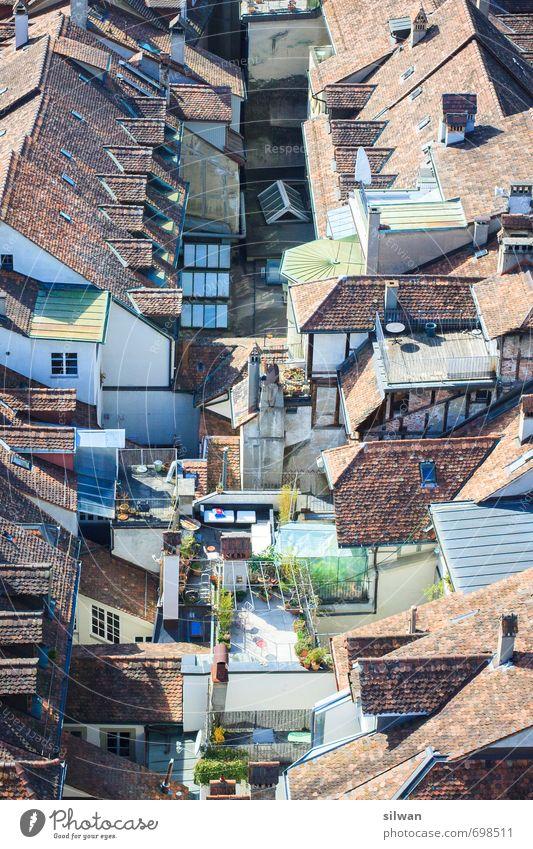 über den Dächern Stadt alt grün schön weiß ruhig Haus Leben außergewöhnlich braun Design frei groß einzigartig Dach viele