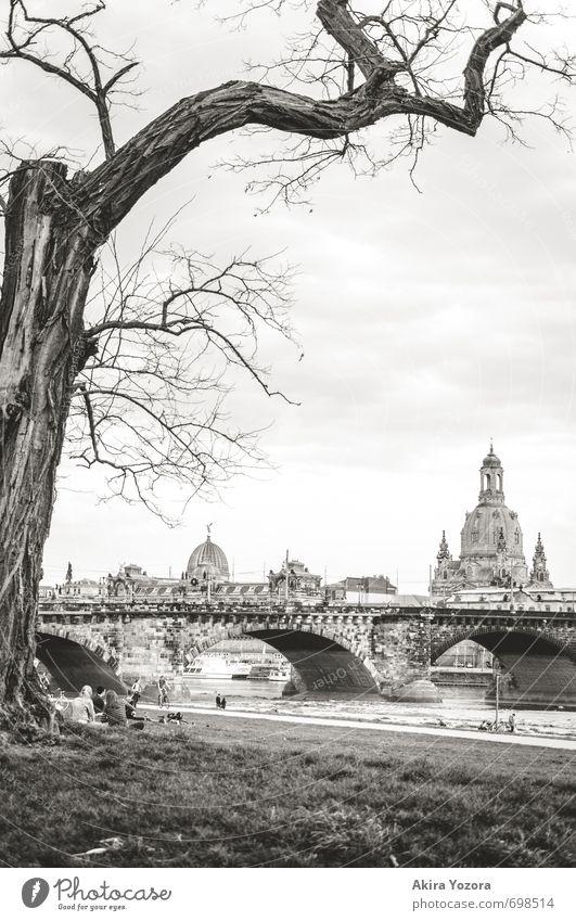 [250] Good old Dresden Himmel Wolken Frühling Baum Gras Wiese Flussufer Deutschland Stadt Hauptstadt Altstadt Kirche Brücke Architektur Sehenswürdigkeit