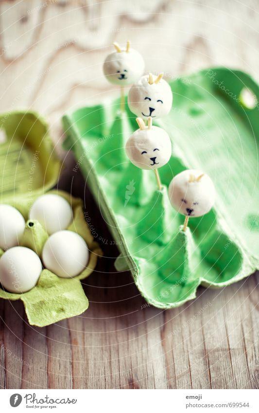 Hasi Kuchen Dessert Süßwaren Ernährung Picknick Fingerfood lecker süß Ei Eierkarton Hase & Kaninchen Ostern Farbfoto Innenaufnahme Menschenleer Tag