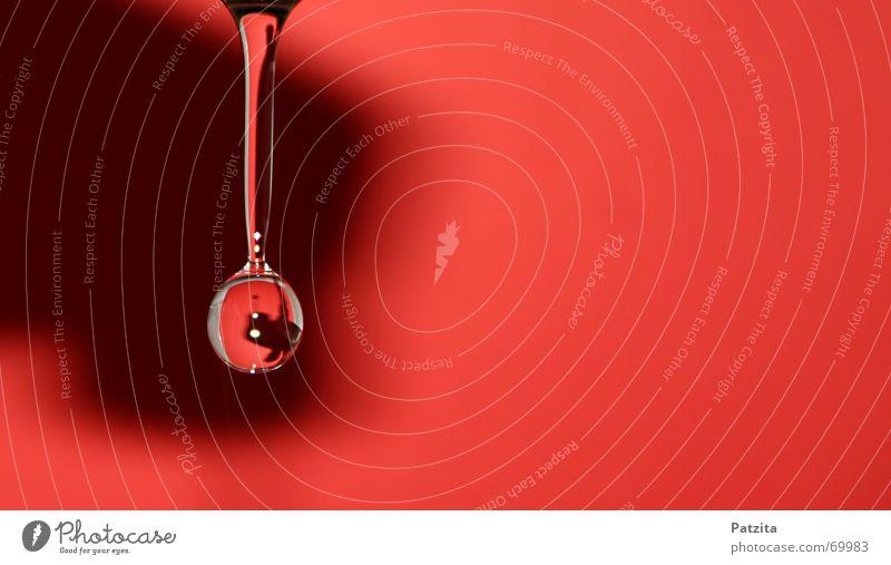 Tropfen auf Rot Wassertropfen Wasserhahn rot Hintergrundbild Wand Farbe Makroaufnahme Nahaufnahme