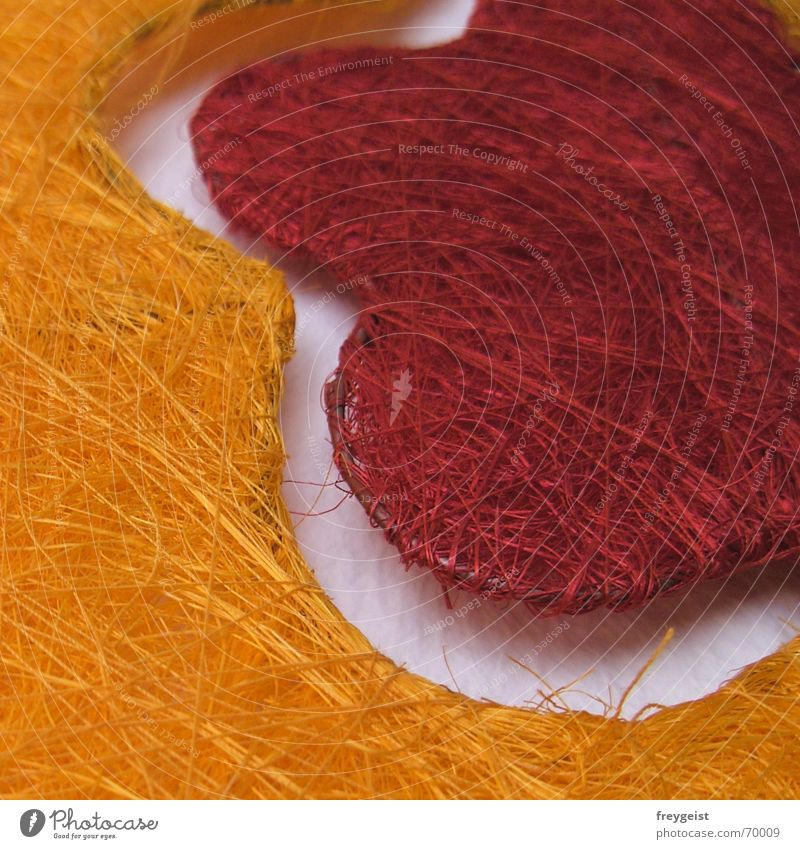 Orange_Red Blume rot orange Draht netzartig Sisal