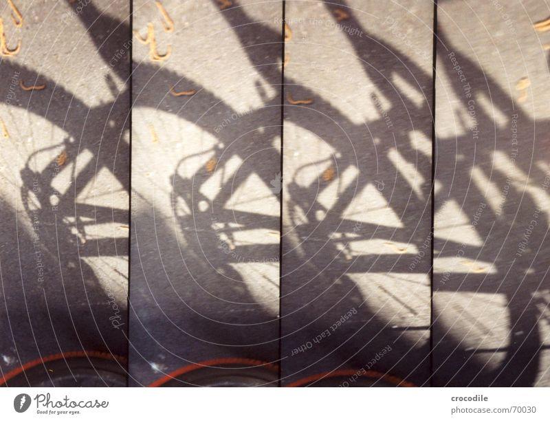 schattenbike Schatten Straße Lomografie Spielen Bewegung supersampler Rothirsch federung