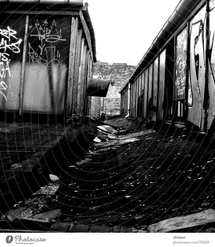 roof top Himmel alt weiß schwarz Haus Mauer Graffiti Glas dreckig Industriefotografie Dach Röhren Rost Leipzig Fensterscheibe Fluchtpunkt