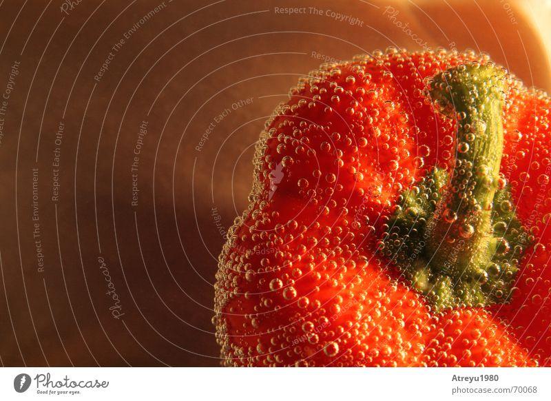 Paprika II grün rot Gesundheit frisch Kochen & Garen & Backen Gemüse Unterwasseraufnahme Vitamin Sauerstoff Paprika