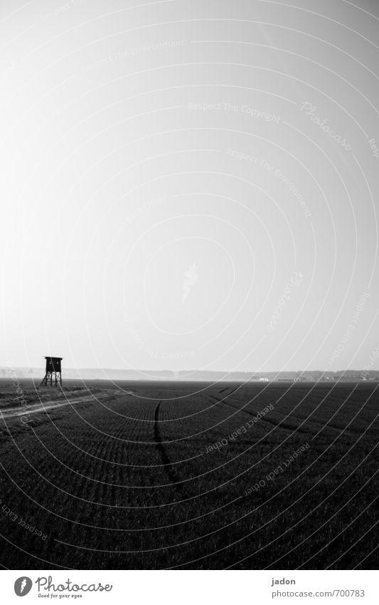 vorfrühling. harmonisch ruhig Freiheit Umwelt Natur Landschaft Frühling Feld Turm Hochsitz Verkehrswege Wege & Pfade natürlich Ferne Jagd Horizont Spuren