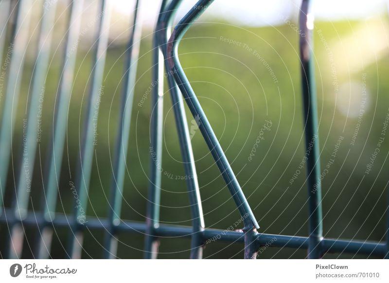 Noch ein (Bau)Zaun Garten Handwerker Gartenarbeit Baustelle Sonnenaufgang Sonnenuntergang Sonnenlicht Stadt Park Mauer Wand Wege & Pfade Wegkreuzung Metall