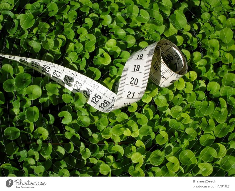 green measuring... Natur clever Griechenland Trifili