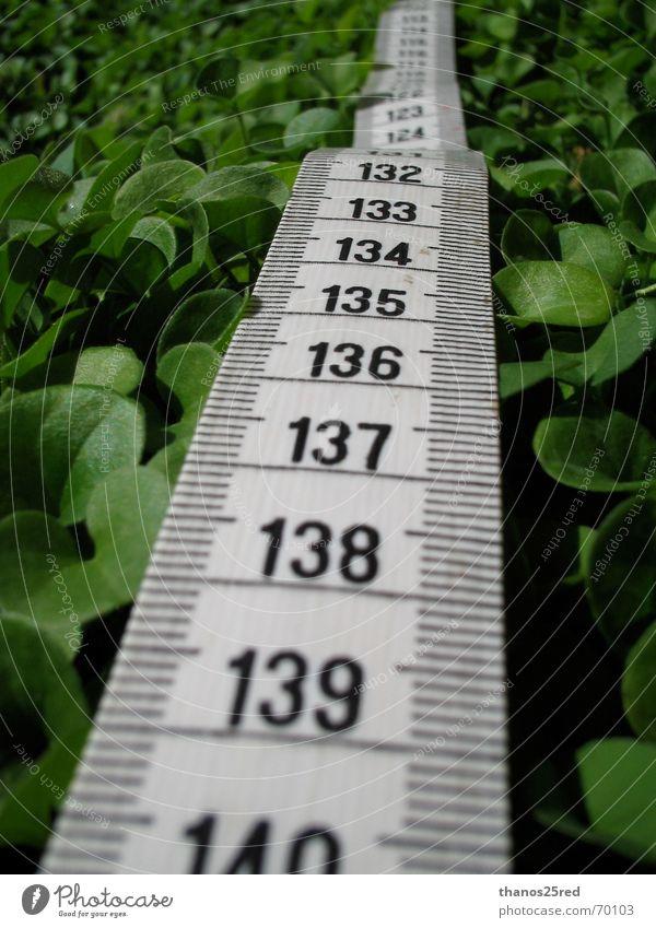 measuring matters Natur clever Trifili