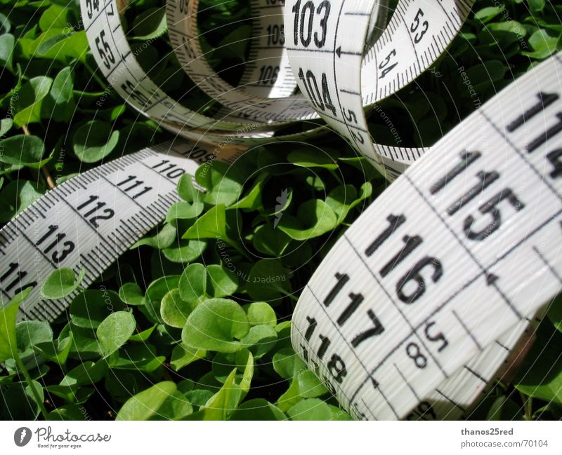 measuring nature Natur clever Trifili