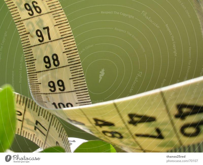 measuring... Natur clever Trifili