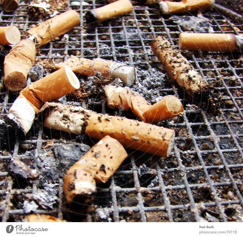 Rauchen kann tödlich sein Ende Zigarette Gitter Teer Rest ungesund Zigarettenasche Aschenbecher Tabak Zigarettenmarke Zigarettenstummel Filterzigarette