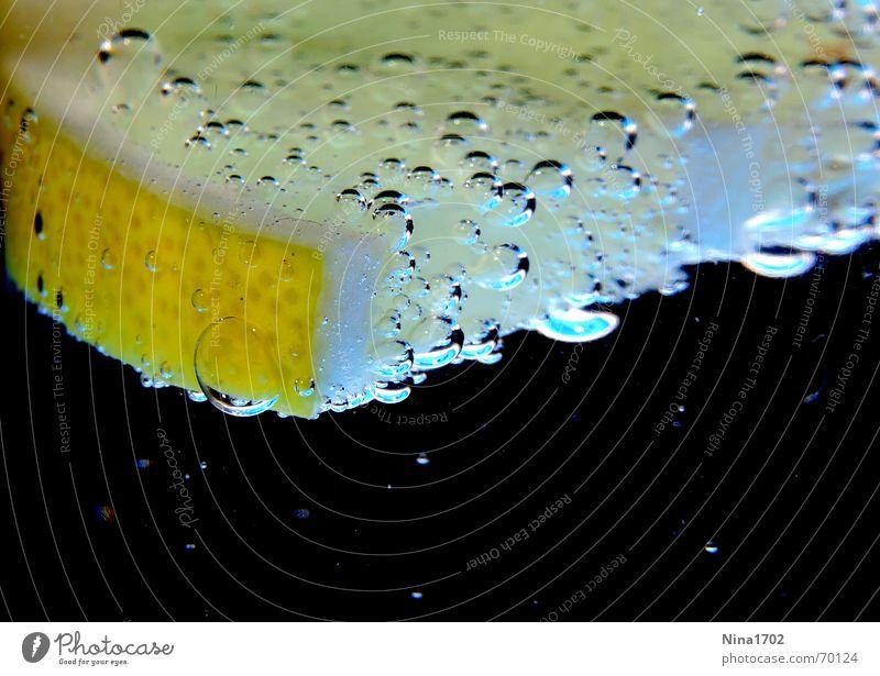 Citruswater Zitrone dunkel Stillleben gelb schwarz Wut Wasser Blase Vor dunklem Hintergrund