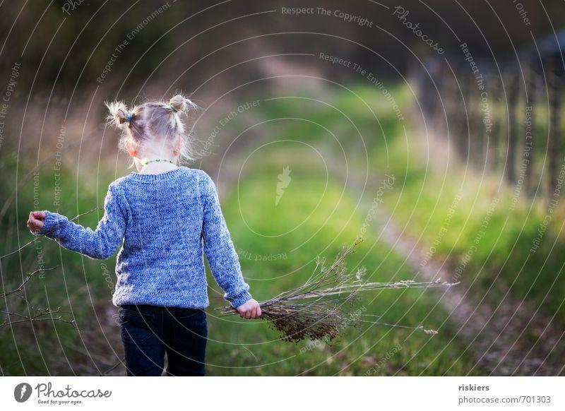 nimm dir zeit. Mensch feminin Kind Mädchen Kindheit Leben 1 3-8 Jahre Umwelt Natur Sonnenlicht Frühling Herbst Schönes Wetter Wiese Wald Erholung gehen genießen