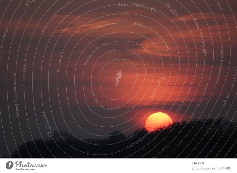 Thermonukleare Reaktion Natur Farbe Sonne Baum rot Wolken schwarz Wald gelb Umwelt Wärme Frühling orange leuchten groß Klima