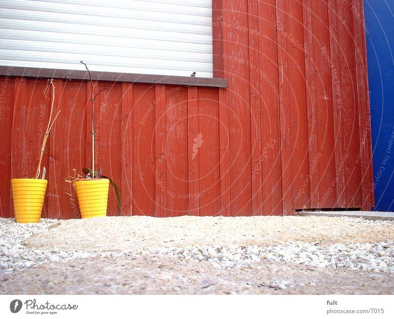 Blumentöpfe blau rot Holz Tür Fassade Häusliches Leben Blumentopf