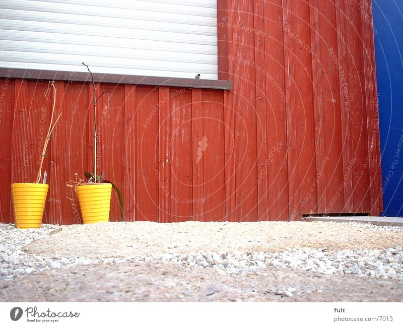 Blumentöpfe Blumentopf Holz Fassade rot Häusliches Leben Tür gleb blau