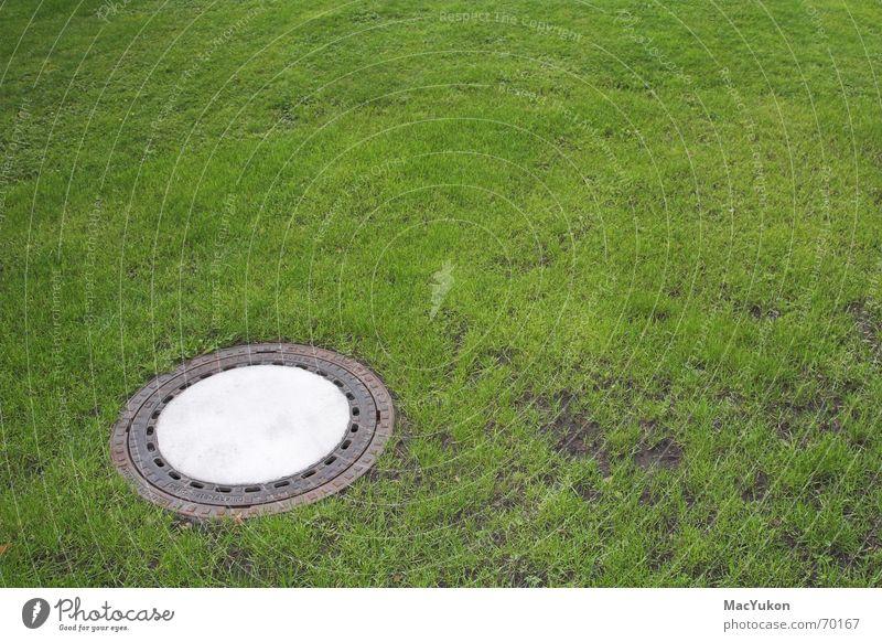 Gulli im grünen Gully Park Abwasser Kanalisation Abfluss Gras Wiese Rasen Bodenbelag Regen Wasser