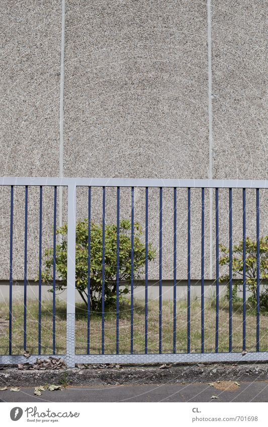 begrenzt Umwelt Natur Gras Sträucher Mauer Wand trist Frustration Langeweile Ordnung Schutz Sicherheit stagnierend Wandel & Veränderung Wege & Pfade Zaun