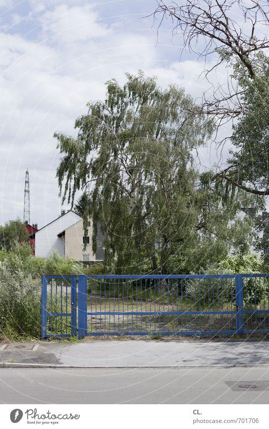 stadtrand Himmel Natur Baum Einsamkeit Landschaft Wolken Haus Umwelt Straße Wege & Pfade Häusliches Leben trist Sträucher geschlossen Schönes Wetter Schutz