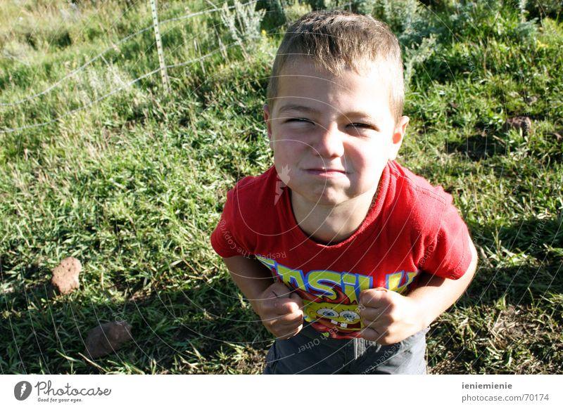 Ich platz gleich! Kind Junge Wunsch Wut Ärger Aggression Frustration Faust einrichten stur ungehorsam Dickkopf