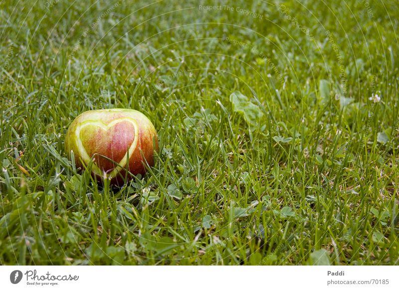 Herzapfel Gras Gefühle Wiese Apfelschale Liebe