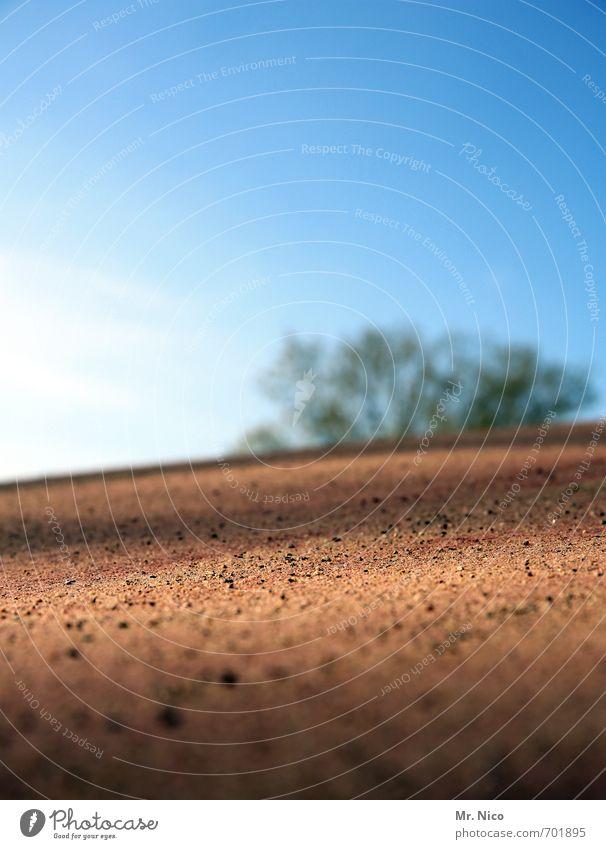ut köln | oase Umwelt Erde Sand Wolkenloser Himmel Sonne Schönes Wetter Baum Garten Park Hügel trocken staubig Oase Spielplatz Sandhaufen Wärme Wüste heiß Natur
