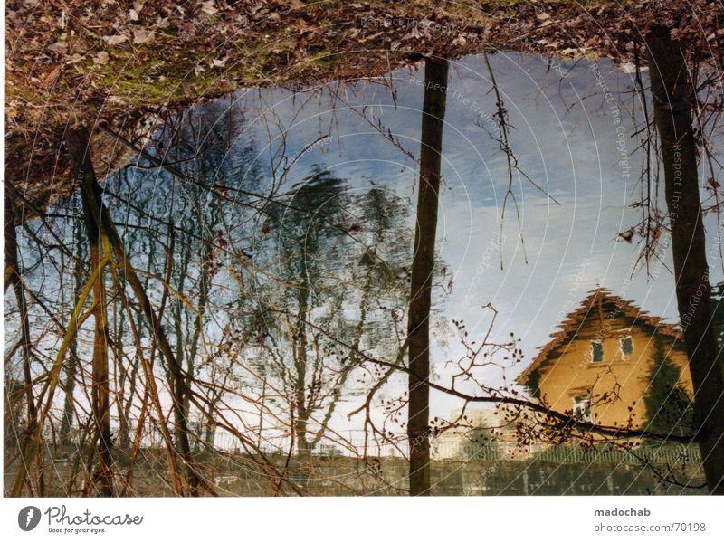 NATÜRLICHE IRRITATION | reflexion wasser idylle heimat kitsch Wasser schön Baum Sommer Haus Fluss Romantik Kitsch Dorf Idylle Bach Reflexion & Spiegelung