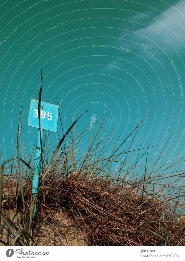 just a little heat Meer Gras Pflanze Ziffern & Zahlen ruhig Sommer Physik heiß Wolken Himmel Blauer Himmel blau Stranddüne Schilder & Markierungen Natur Sand