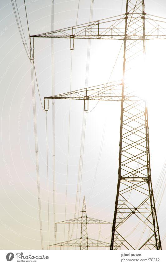 ui gug ma, auf dem Baum wächst Strom! #2 Sonnenstrahlen Leitung Kabel Elektrizität Strommast Stromtransport Energiewirtschaft Gegenlicht Erneuerbare Energie
