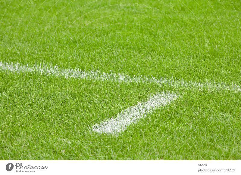 Spielfeld weiß grün Sport Linie Fußball Rasen Tor einzeln Fußballer sehr wenige Balken Rugby