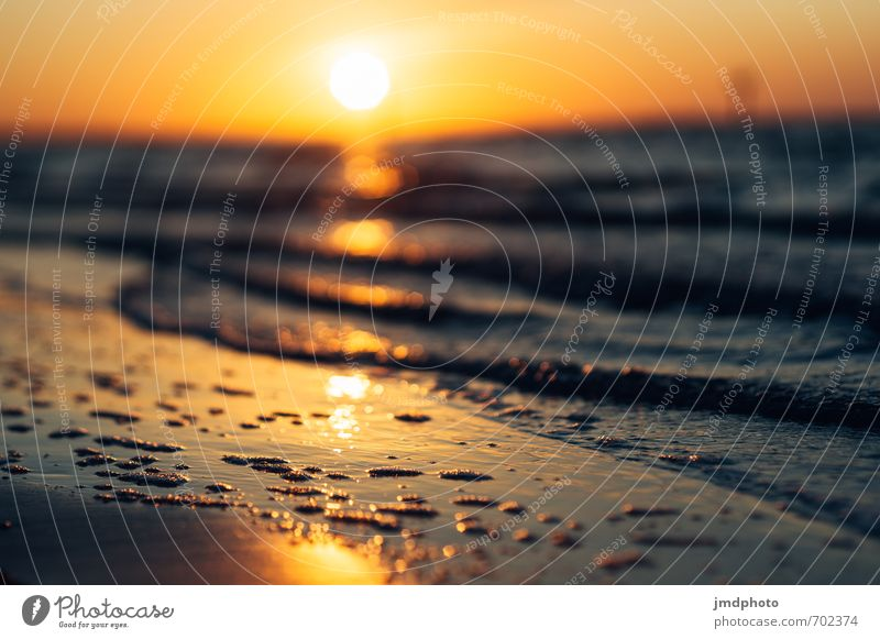 Sonnenuntergang in Florida Ferien & Urlaub & Reisen Ferne Kreuzfahrt Sommer Sommerurlaub Strand Meer Wellen Natur Urelemente Feuer Luft Wasser Himmel Horizont
