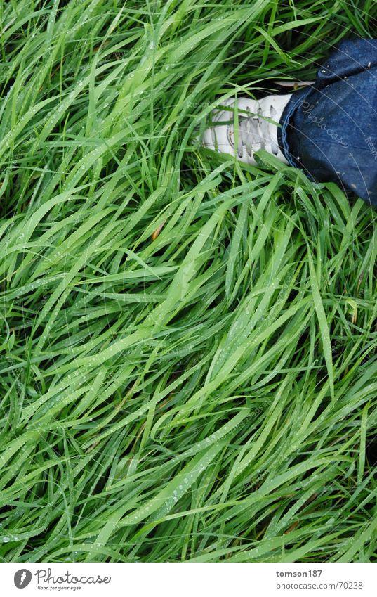 wet shoes grün Wiese Regen Schuhe Wellen nass rasenmähen