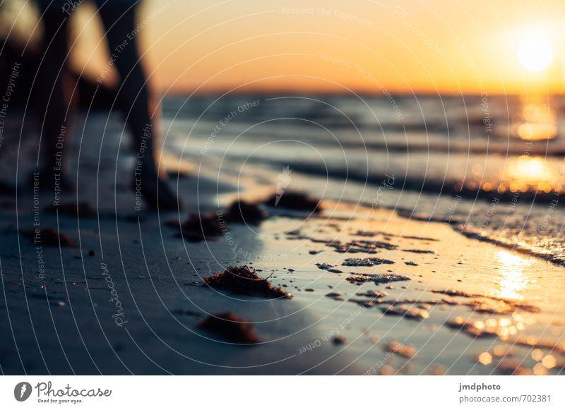 Spazieren gehen am Strand & Sonnenuntergang gucken Ferien & Urlaub & Reisen Tourismus Ausflug Ferne Freiheit Kreuzfahrt Sommer Sommerurlaub Meer Wellen Mensch