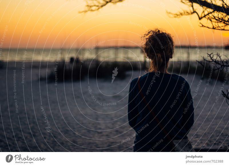 Sonnenuntergang in Florida Mensch Jugendliche Ferien & Urlaub & Reisen Wasser Sommer Meer Erholung Junge Frau ruhig 18-30 Jahre Ferne Strand Erwachsene feminin