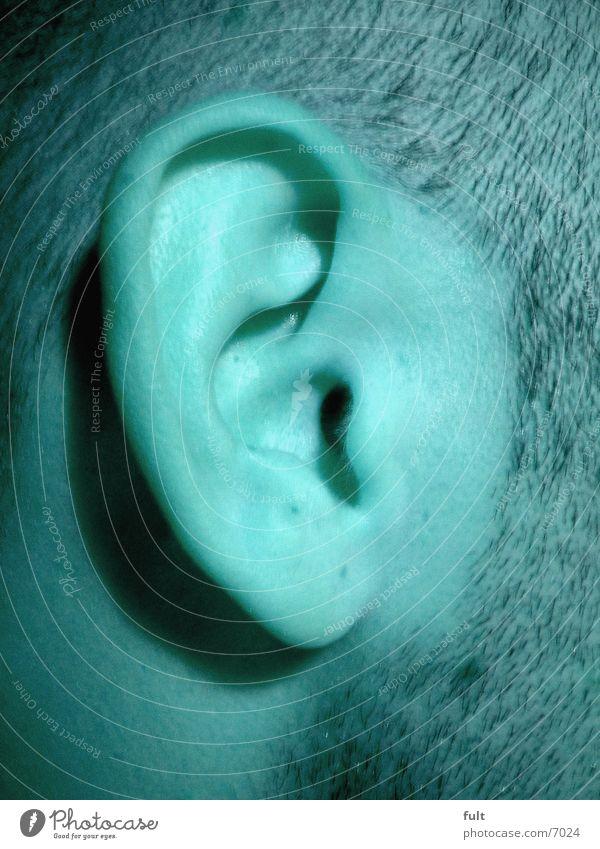 DasOhr Mensch Ohr