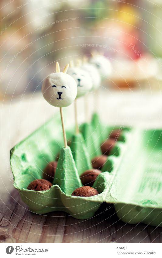 bunny cake pops Kuchen Süßwaren Ernährung Picknick Slowfood Fingerfood lecker süß Ostern Osterhase Osterei Farbfoto Innenaufnahme Nahaufnahme Menschenleer Tag